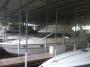 Maxum 4100 SCA Flybridge Motor Yacht